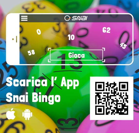 QR App Bingo