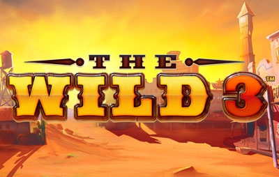 Slot Online The Wild 3