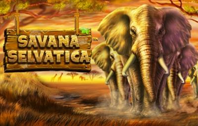 Slot Online Savana Selvatica